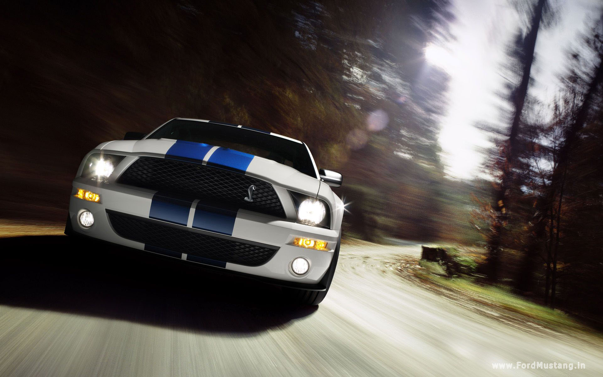 Ford Mustang wallpaper 3 HQ