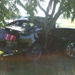 Ford Mustang California Special Edition