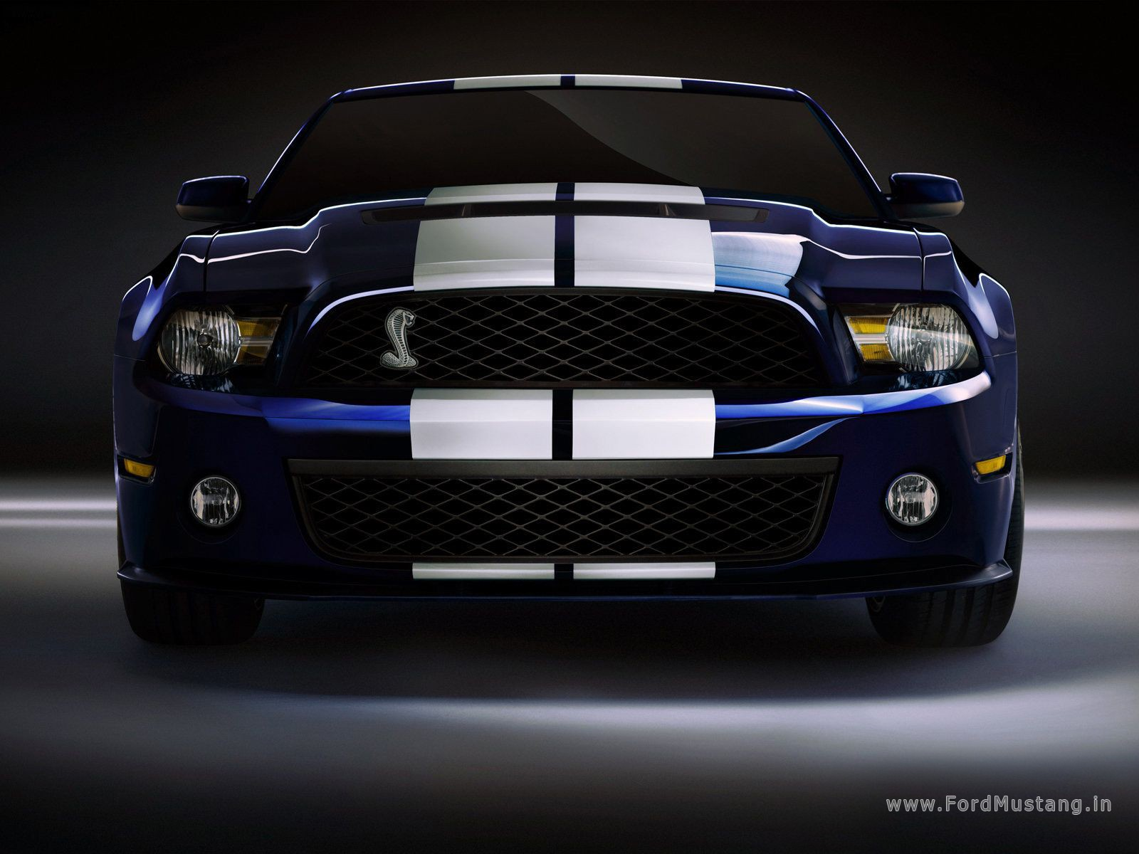 Ford Mustang Shelby Gt500 2010 Wallpapers Ford Mustang