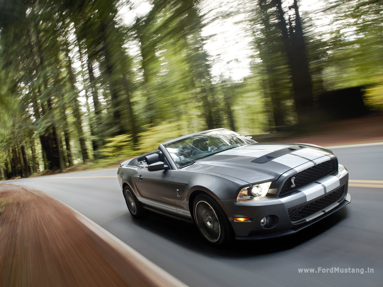 Ford Mustang Shelby Gt500 Convertible 2010 Wallpapers Ford