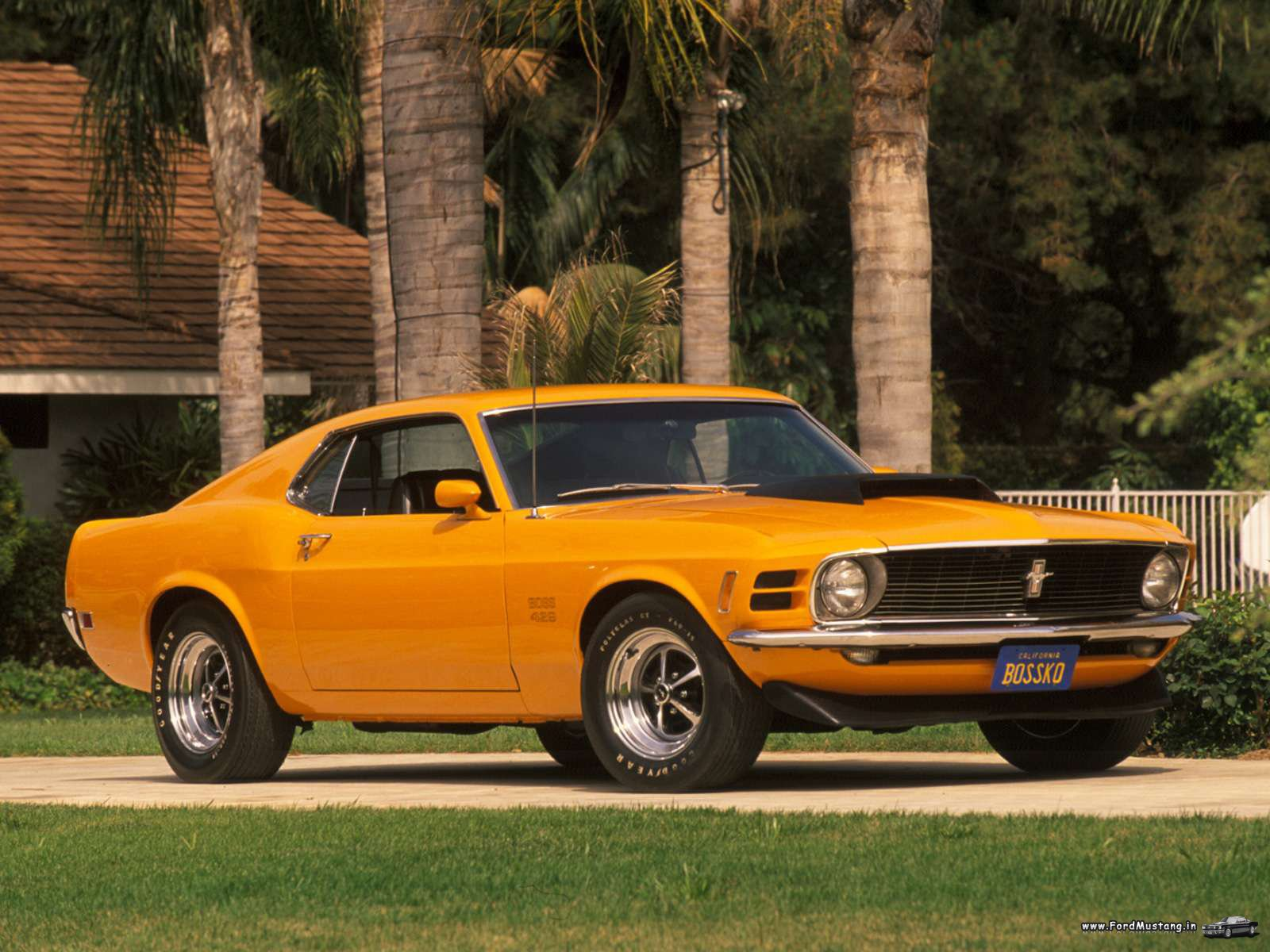 Ford Mustang Boss 302 1970 1600 215 1200 Wallpapers Ford